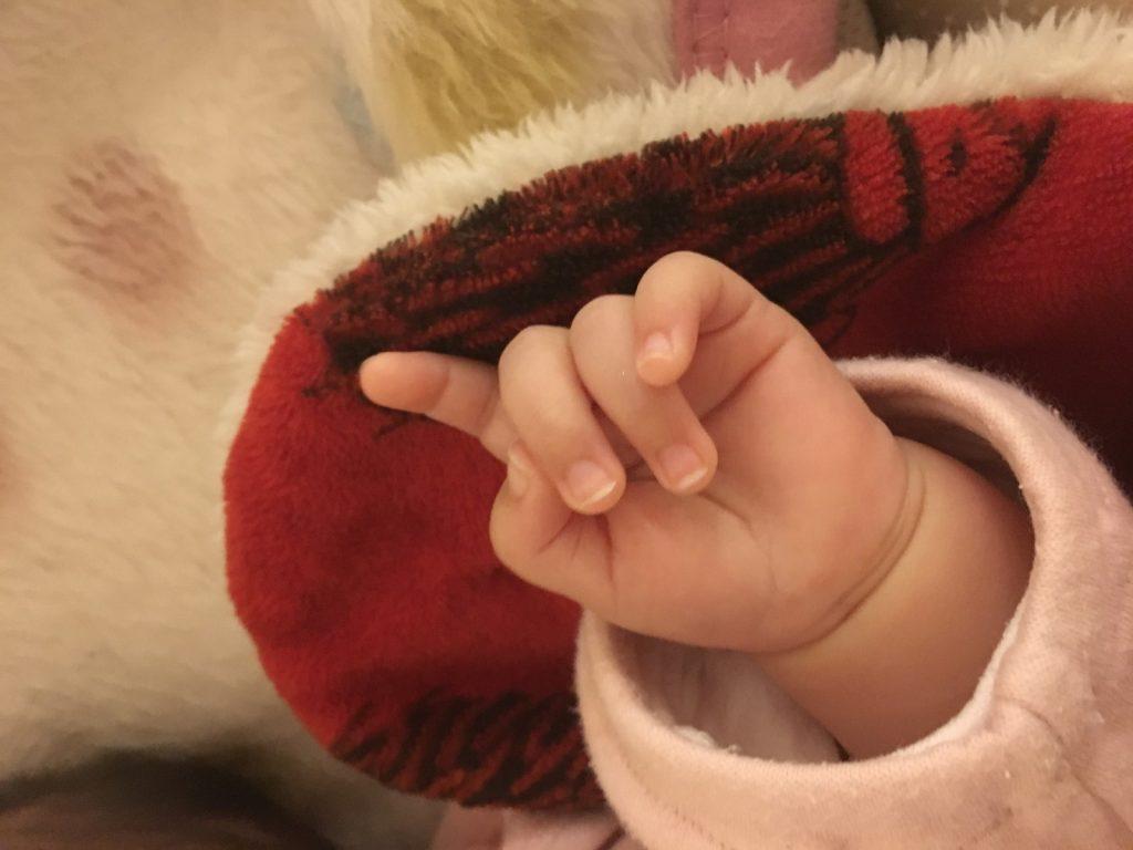 image-ねねちゃんの爪切りを、諦めた | パパ部