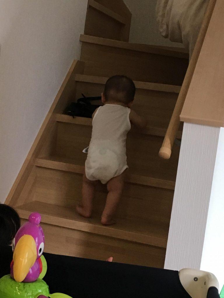 image-9ヶ月で階段を登り始めた | パパ部