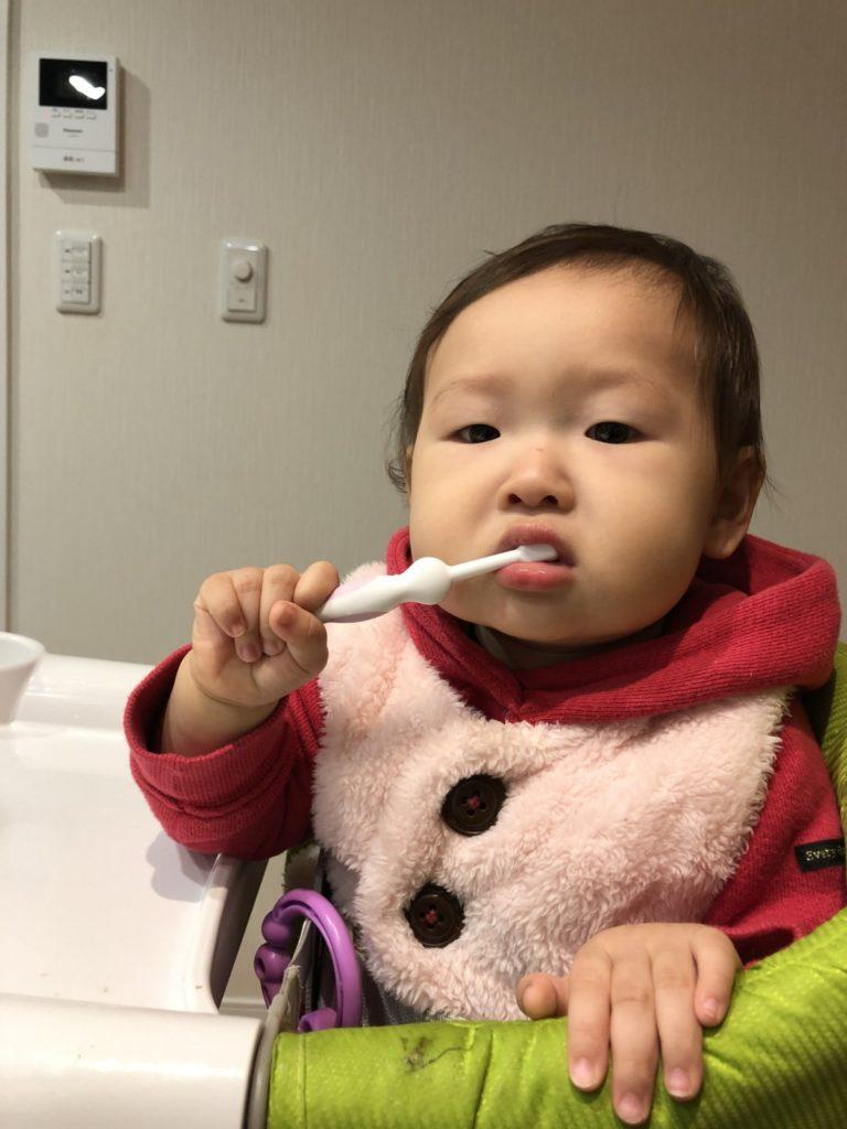 image-歯を磨きましょう | パパ部