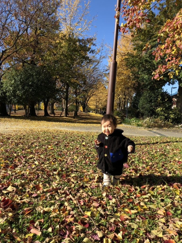 image-公園と黄色い葉っぱと、ねねちゃん | パパ部