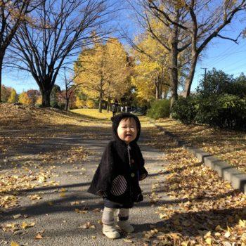 公園と黄色い葉っぱと、ねねちゃん